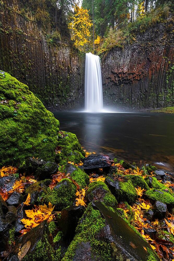 Abiqua Falls in autumn, Scotts Mills, Marion county, Oregon, United States of America, North America - 1251-546