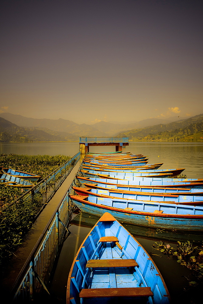 Boats at harbour on Fewa Lake, Pokhara, Nepal, Asia - 1262-124