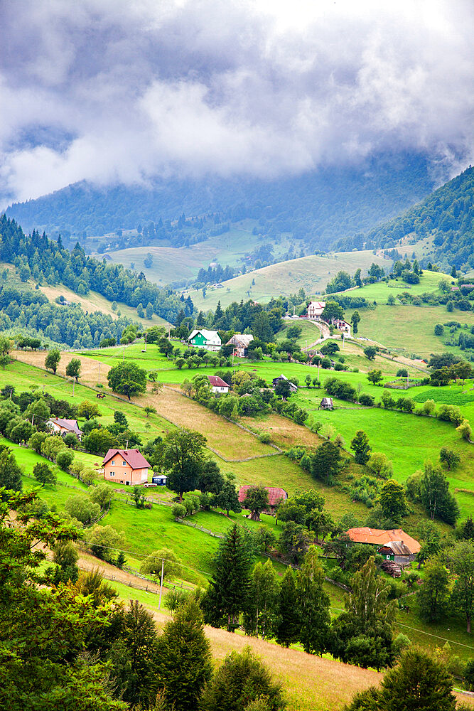 Rural landscape of Magura village, 1,000 metres up in the mountains, in the Piatra Craiului National Park - 1265-154