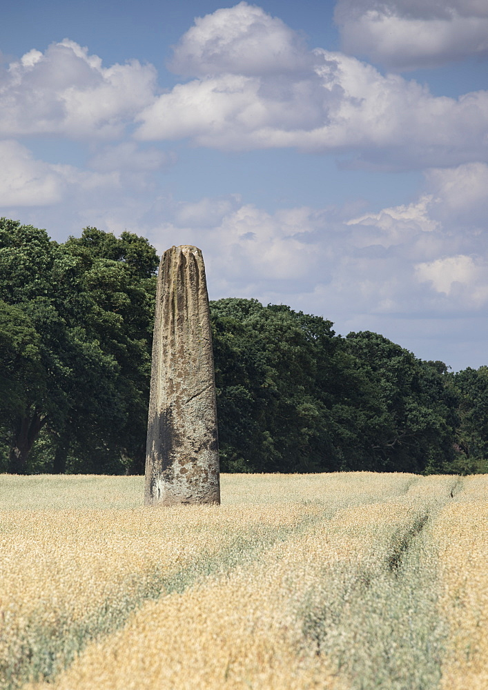 The Devils Arrows, a series of Neolithic Standing Stones near Boroughbridge, North Yorkshire, Yorkshire, England, United Kingdom, Europe - 1266-159