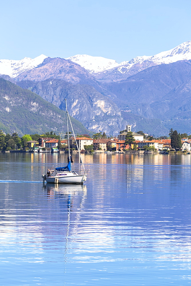 Sailboat sail on the lake in front Mandello del Lario, Province of Lecco, Como Lake, Lombardy, Italy, Europe. - 1269-252