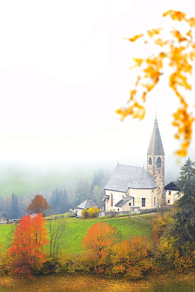Church of Santa Magdalena in the autumn mist, Funes Valley, Sudtirol (South Tyrol), Dolomites, Italy, Europe - 1269-57