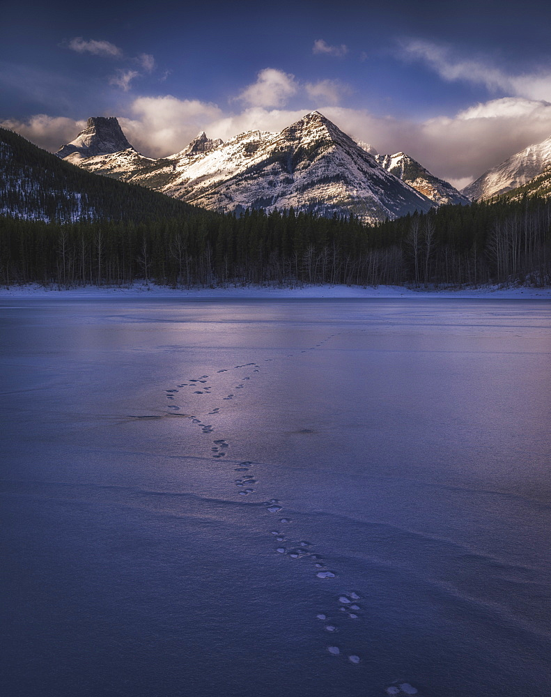 Winter landscape of the Canadian Rockies at Wedge Pond, tracks of wildlife on frozen lake, Kananaskis, Alberta, Canada, North America
