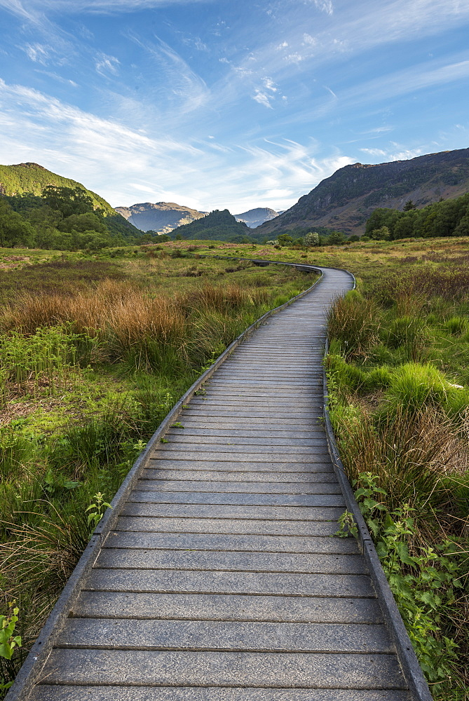 A raised path in the Borrowdale Valley with Castle Crag the prominent hill in the centre of image, Lake District National Park, UNESCO World Heritage Site, Cumbria, England, United Kingdom, Europe - 1287-36