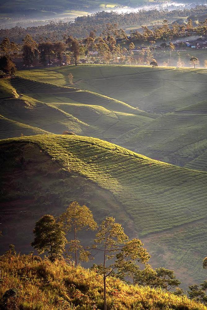 Sunrise moment from Giri's peak, Bandung, Java, Indonesia, Southeast Asia, Asia - 1288-9