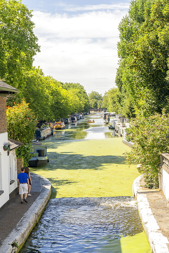 Canal boats, Little Venice, London, England, United Kingdom, Europe - 1297-1219
