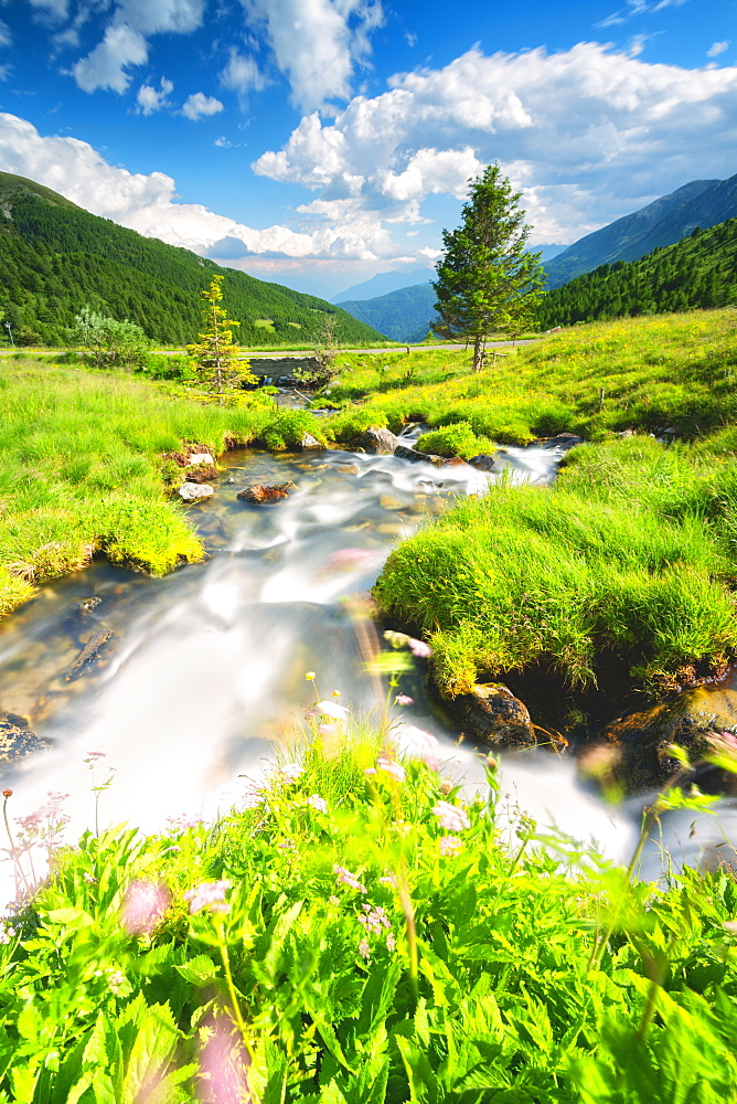 Stream in Stelvio National Park, Mortirolo Pass in Vall Camonica, Brescia, Lombardy dsitrict, Italy, Europe - 1299-39