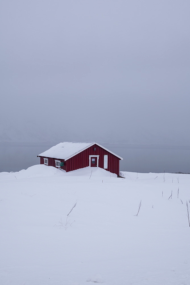 A red house partly buried in snow in winter scene on Lofoten Islands, Arctic, Norway, Europe