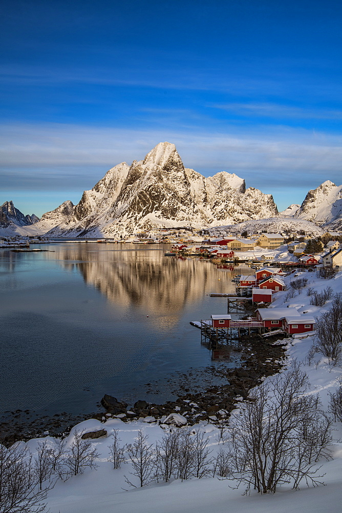 The fishing village of Reine in winter, Reinefjord, Moskenesoya, Lofoten, Arctic, Norway, Europe