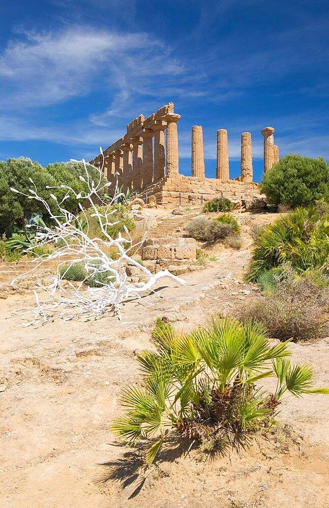 View to the hilltop Temple of Hera, aka Juno, in the UNESCO listed Valley of the Temples, Agrigento, Sicily, Italy - 1310-145