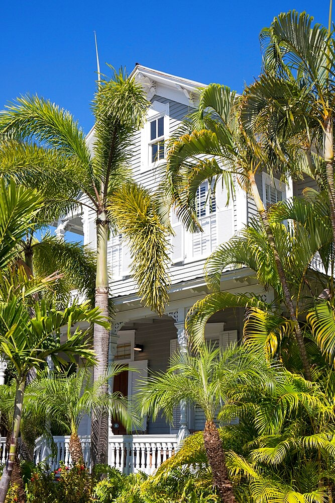 View through palm trees to facade of a typical wooden house, Old Town, Key West, Florida Keys, Florida, USA - 1310-283