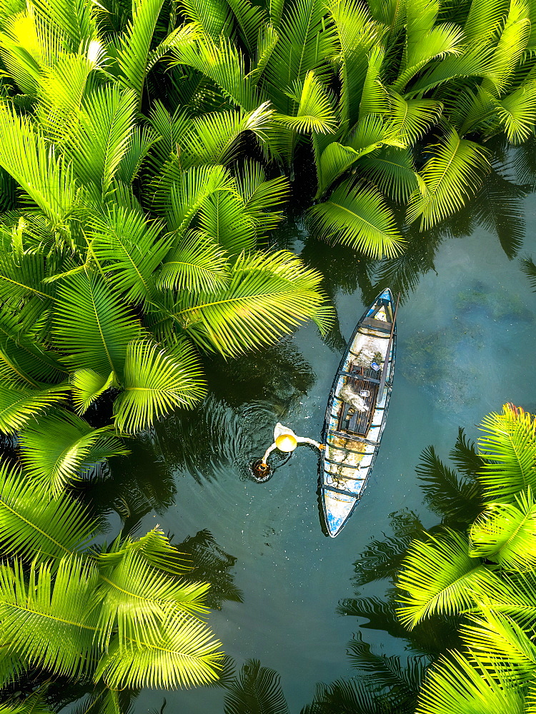 Fisherman fishing in the middle of nipa palm forest, Quang Ngai, Vietnam