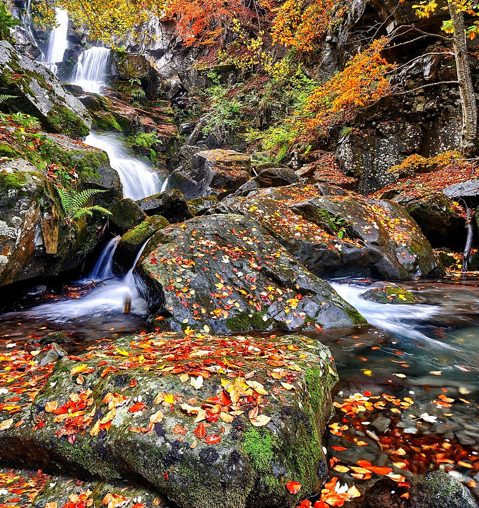Dardagna Waterfalls in autumn, Parco regionale del Corno alle Scale, Emilia Romagna, Italy - 1336-47