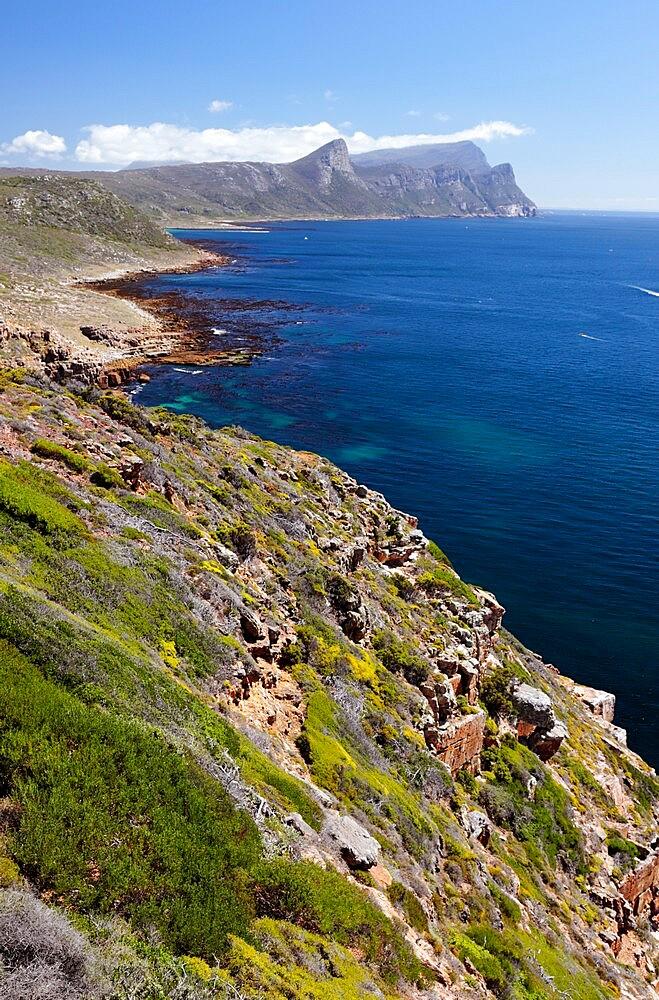 Cape Point Nature Reserve - False Bay - 1338-15