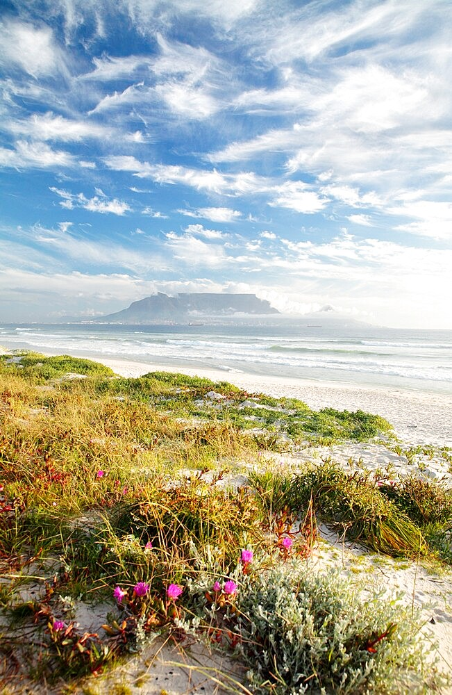 Cape Town from Bloubergstrand - 1338-7