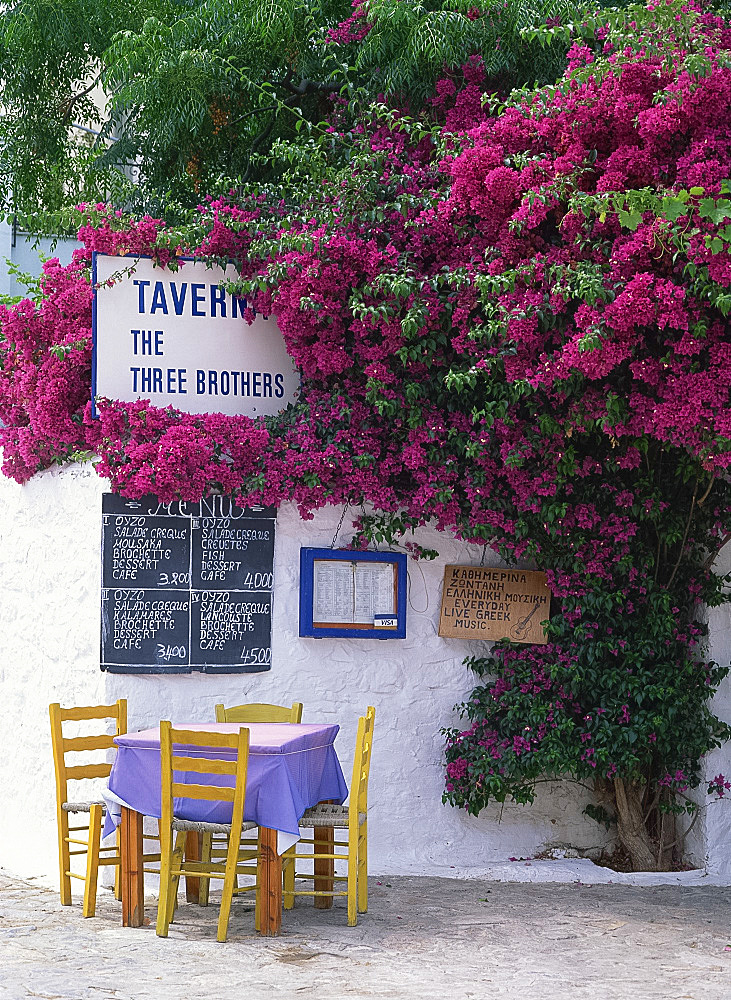 The Three Brothers Taverna, with menu, tables and chairs under bougainvillea, on Hydra, Argo Saronic Islands, Greek Islands, Greece, Europe
