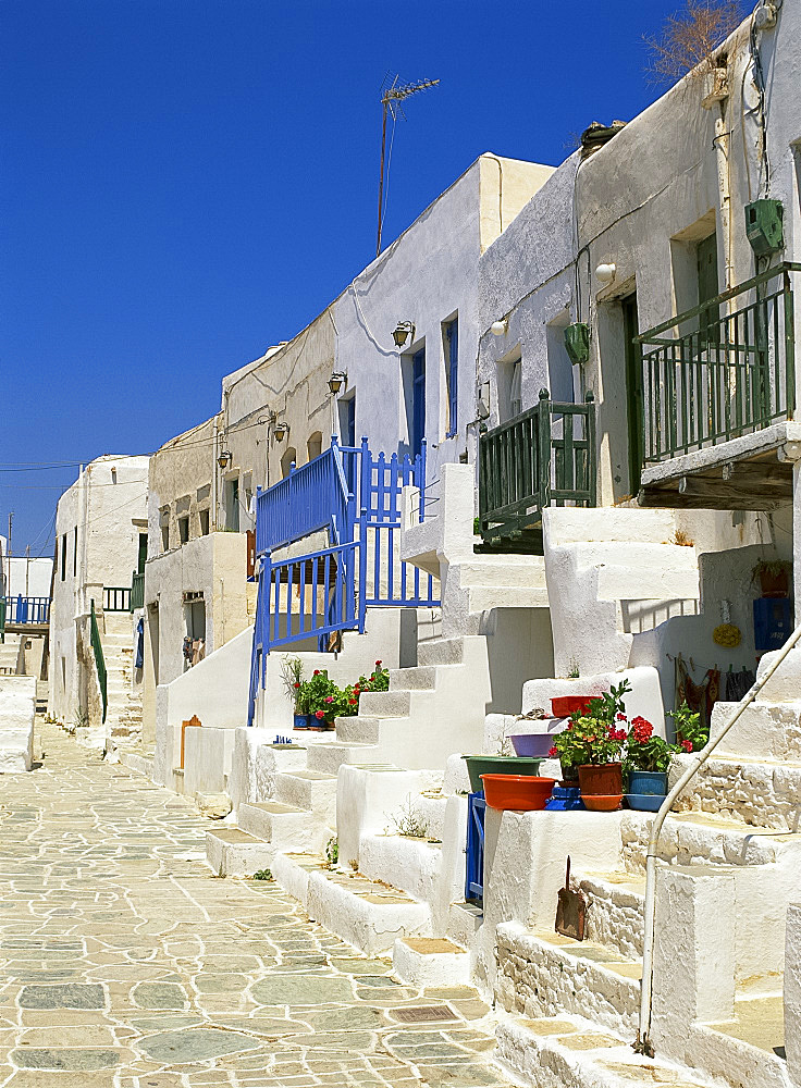 White houses with steps, balconies and flower pots line a street in The Kastro on Folegandros, Cyclades, Greek Islands, Greece, Europe