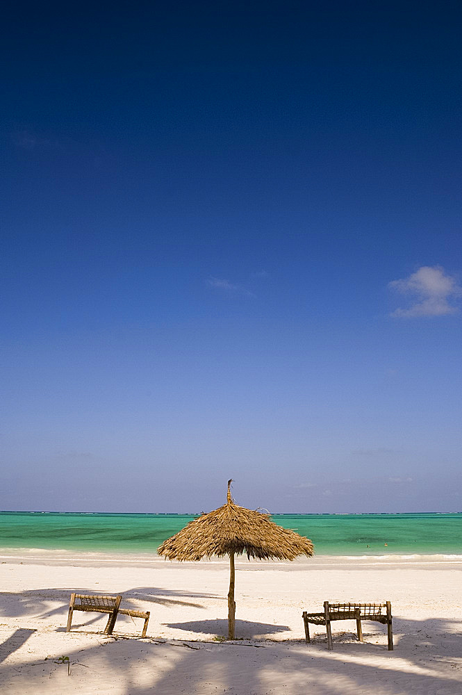 Palm trees and thatched umbrellas on the beach at Paje, Zanzibar, Tanzania, East Africa, Africa