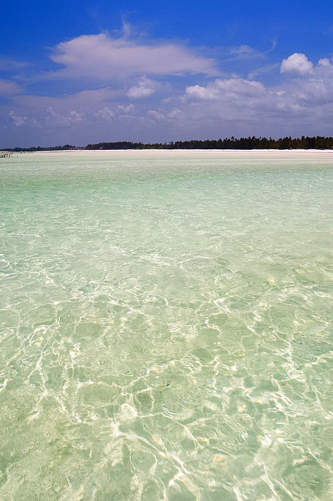The shallow sea at low tide near Paje Beach on the edge of the Indian Ocean, Zanzibar, Tanzania, East Africa, Africa