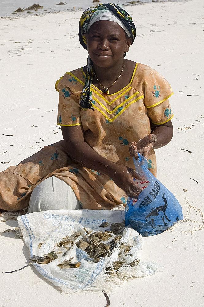 Local woman on the beach sorting clams, Paje, Zanzibar, Tanzania, East Africa, Africa
