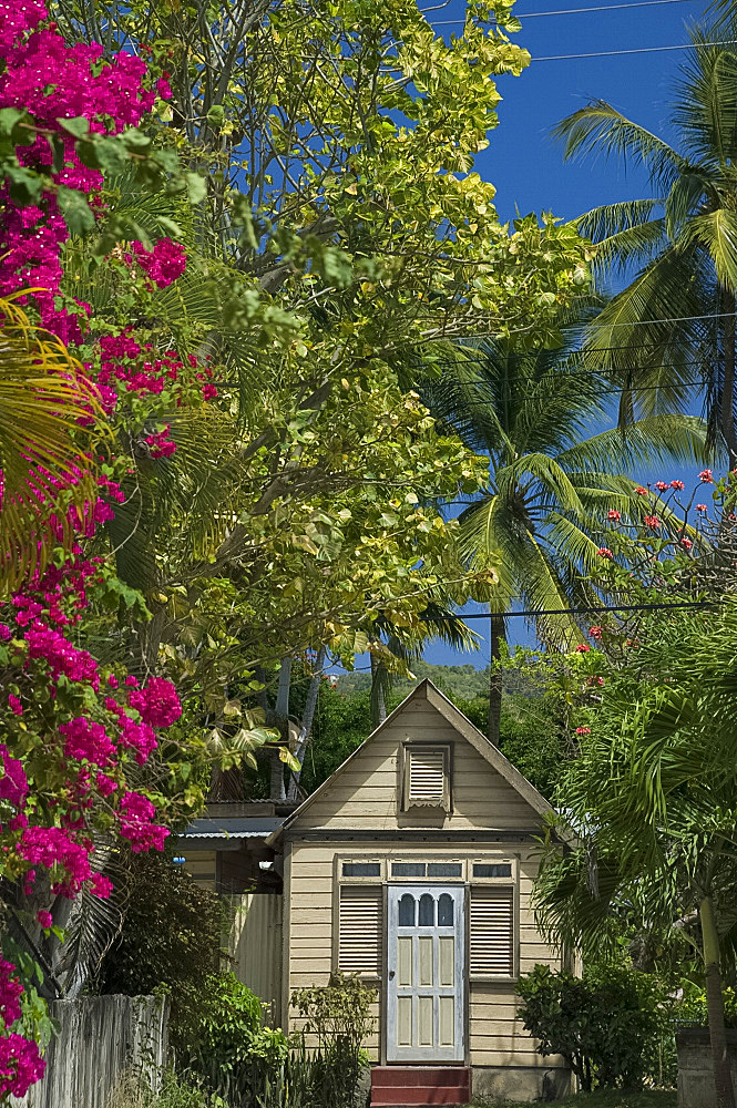 A traditional chattel house surrounded by bougainvillea and palm trees in Barbados, The Windward Islands, West Indies, Caribbean, Central America