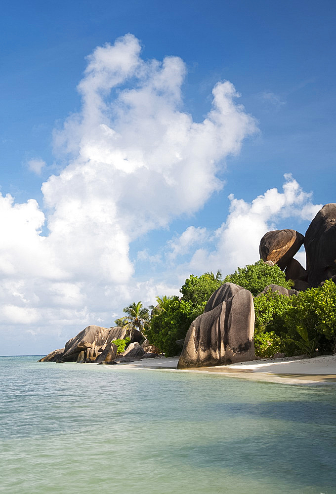 Distinctive large granite boulders and palm trees on Anse Source d'Argent, La Digue, Seychelles, Indian Ocean, Africa
