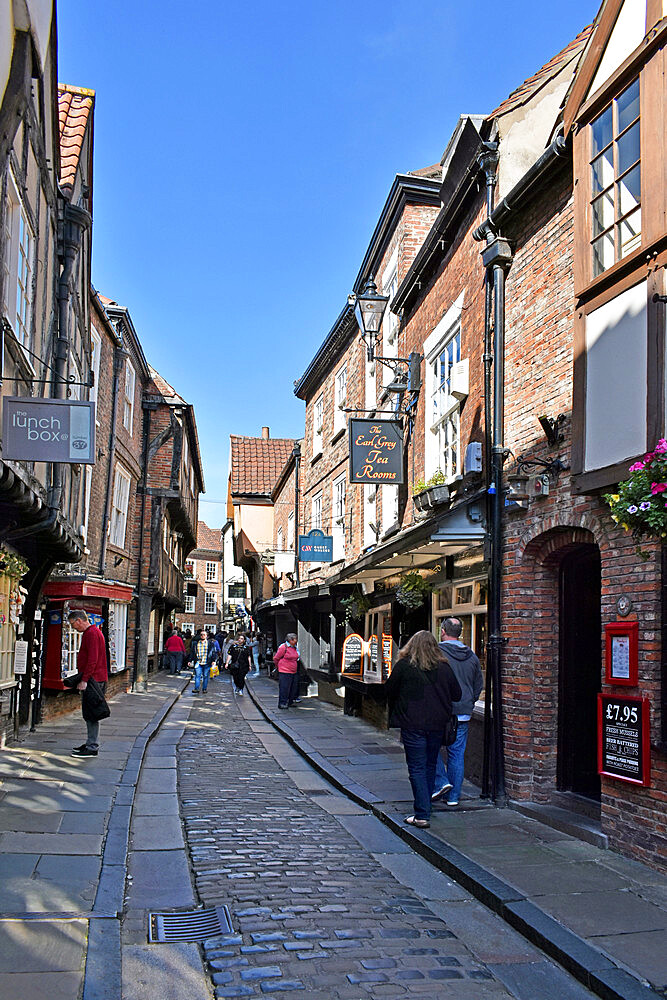 The Shambles, the ancient street of the butchers of York, mentioned in the Doomsday Book of William the Conqueror, York, Yorkshire, England, United Kingdom, Europe - 190-9824