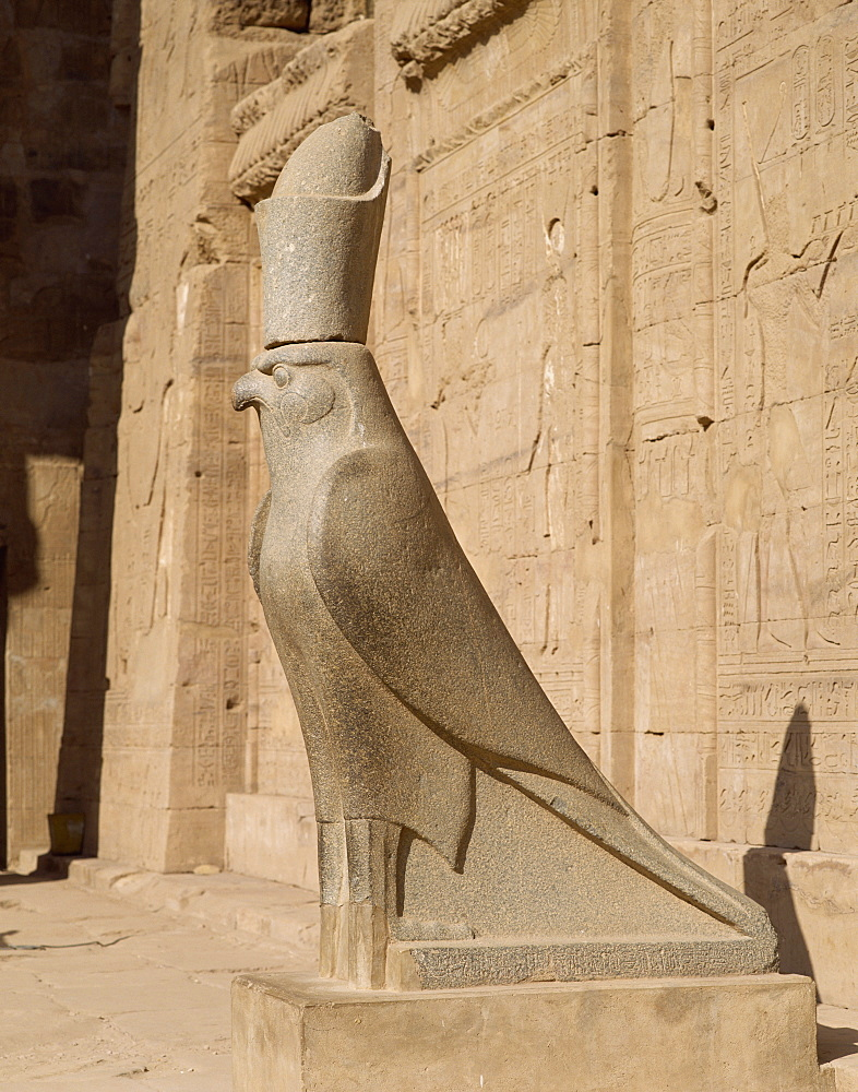 The Statue of Horus (the falcon god), at the Temple of Horus, Edfu, Egypt, North Africa, Africa