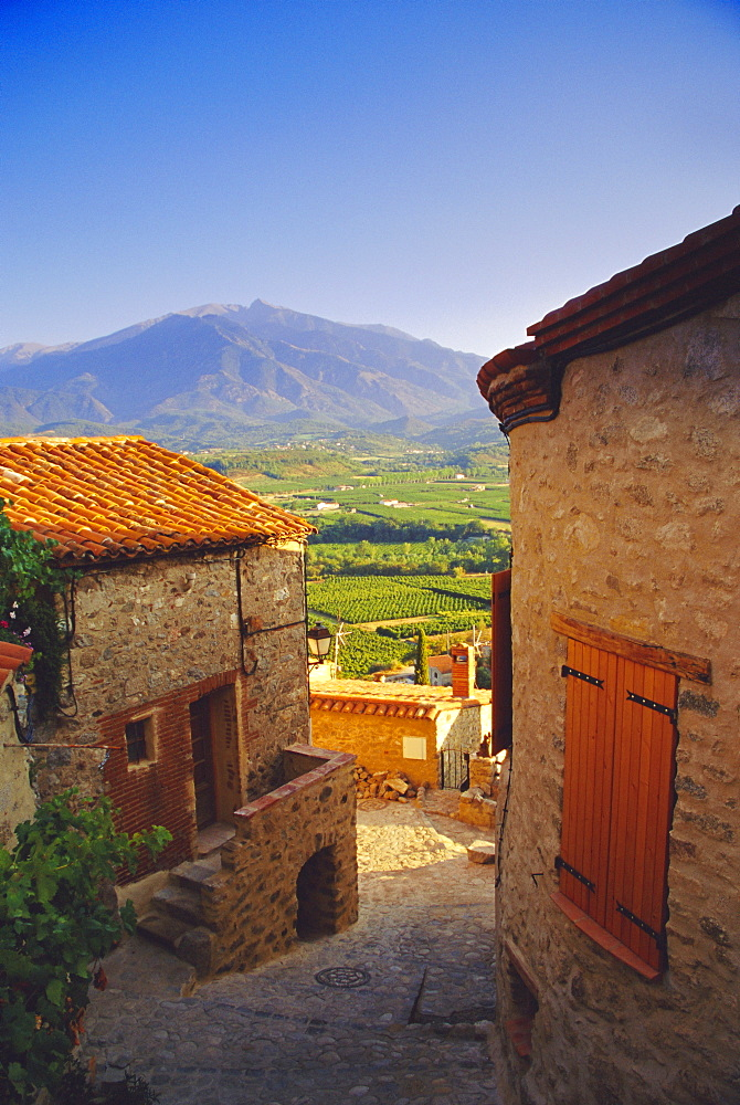 View from Eaus village of Mont Canigou, Pyrenees-Orientale, Languedoc-Roussillon, Pyrenees, France, Europe