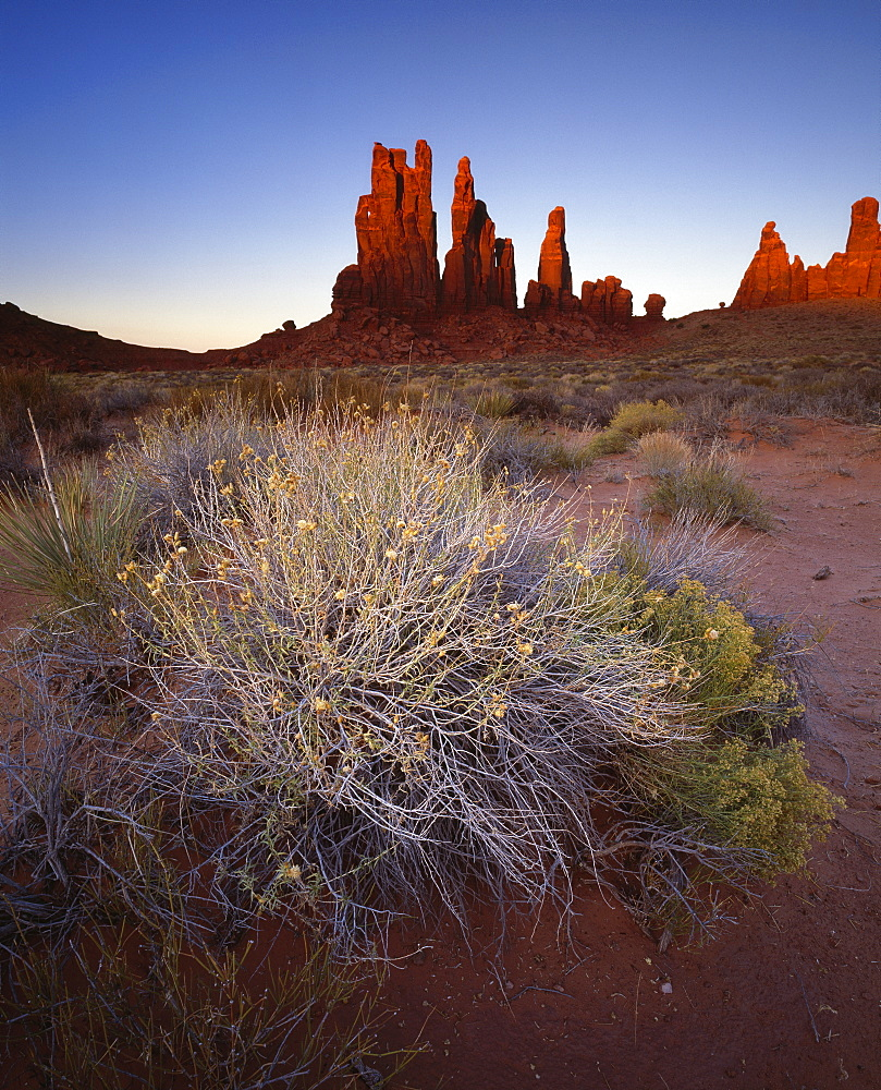 Sandstone pillars bathed in golden evening light, Monument Valley Navajo Tribal Park, border of Utah and Arizona, United States of America, North America
