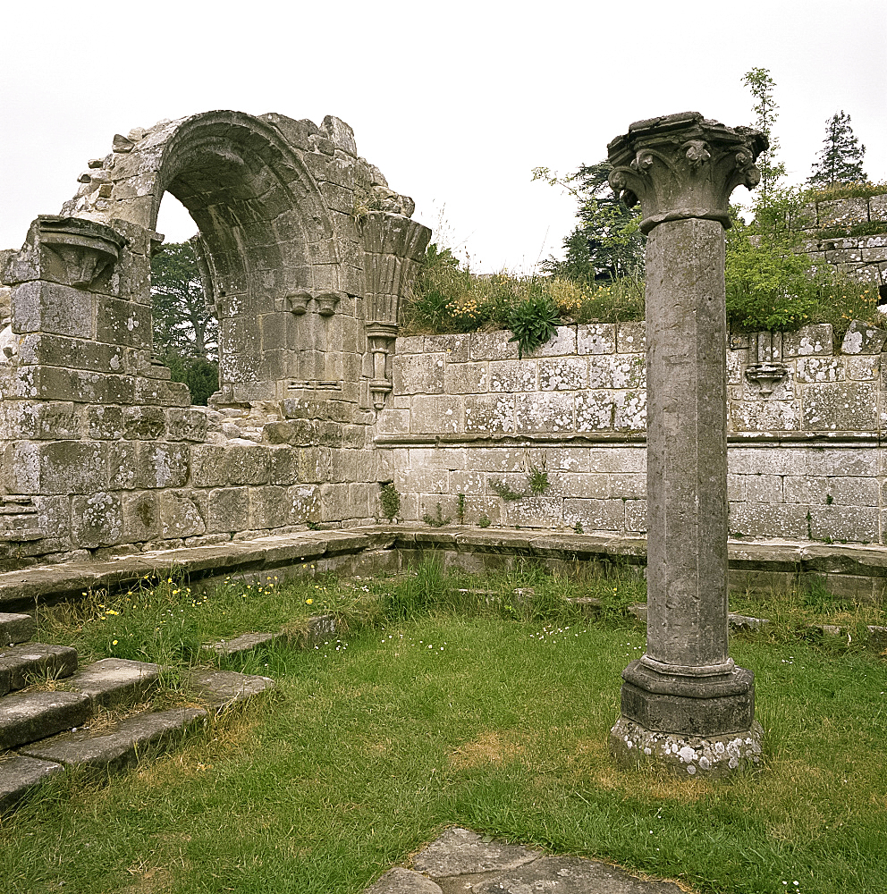 Ruins of Chapter House, Jervaux Abbey, Yorkshire, England, United Kingdom, Europe - 322-2221