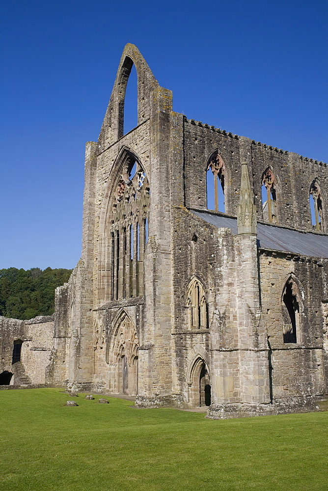 Vertical view of West front and South west corner of Tintern Abbey, Monmouthshire, Wales, United Kingdom, Europe