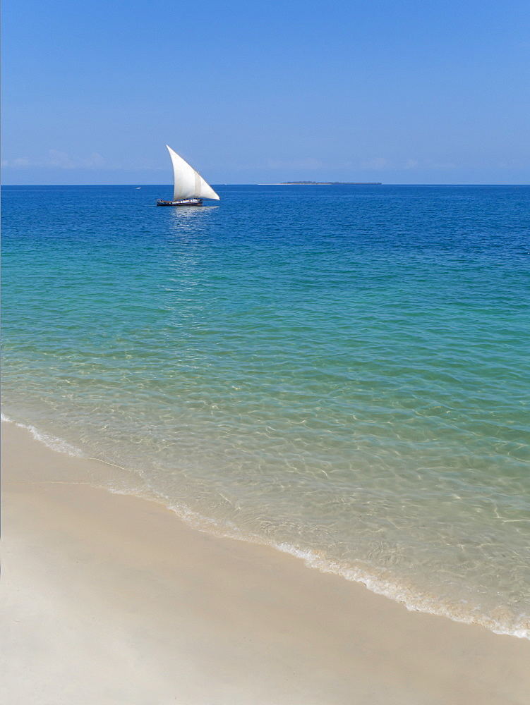 Beach and Indian Ocean dhow, Zanzibar, Tanzania, East Africa, Africa