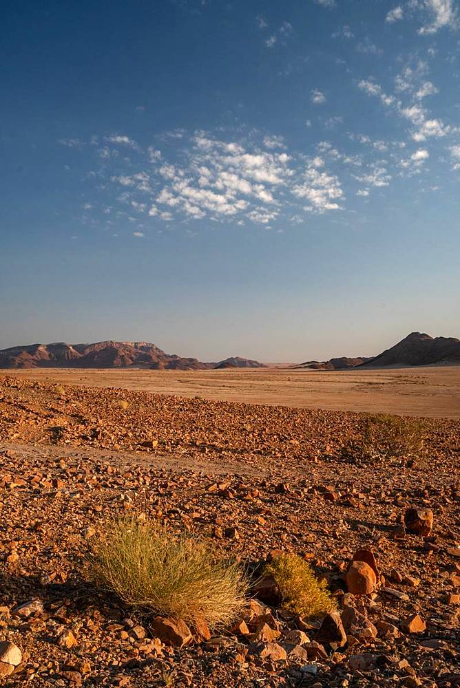 Mountains and gravel plain, Sossusvlei area, at dusk, Namib-Naukluft, Namibia, Africa
