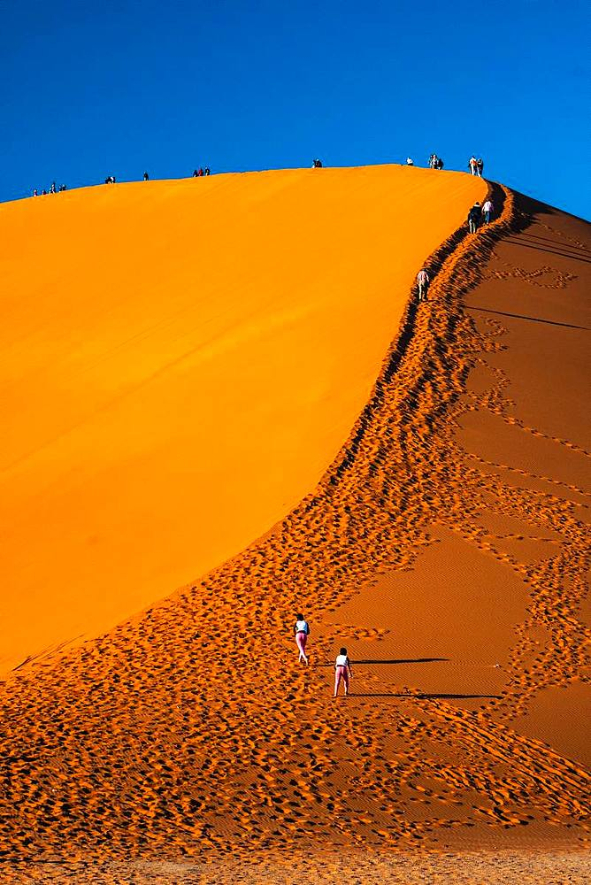 Visitors climb massive orange sand dune known as Dune 45, Sossusvlei area, Namib Desert, Namib-Naukluft, Namibia, Africa