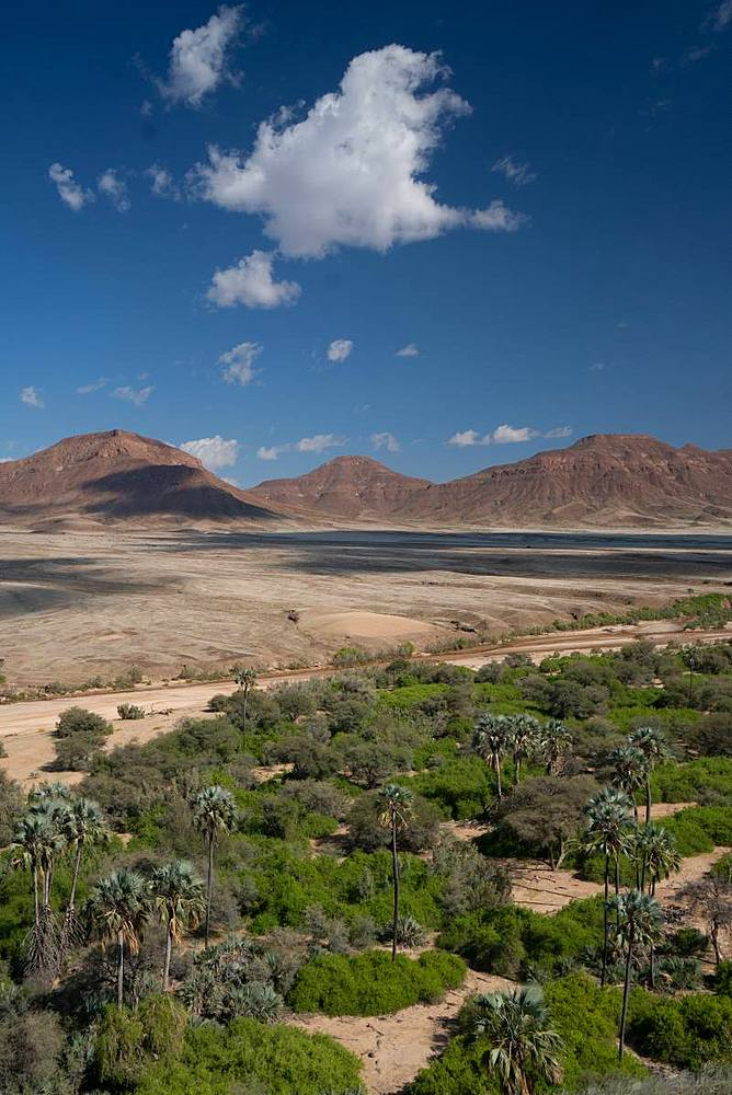 View over Hoarusib Riverbed, mountain range in background, Puros, north of Sesfontein, Nambia, Africa - 450-4351
