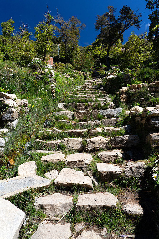 Long flight of Inca stone steps (the Inca Stairs) leading from the water to the top of Sun Island, Lake Titicaca, Bolivia, South America