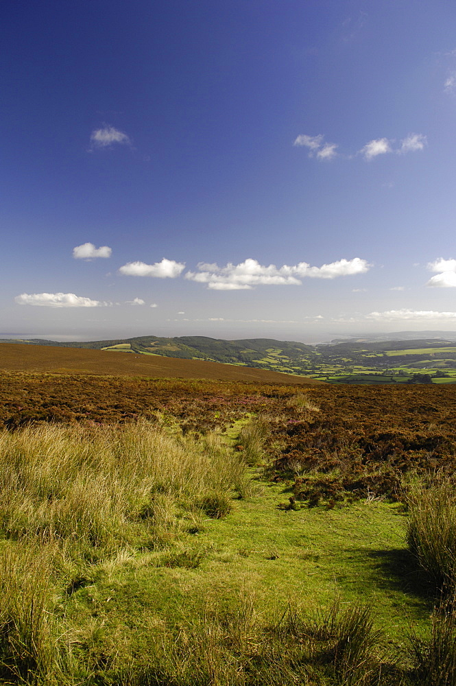 View to Bristol Channel, Exmoor, Somerset, England, United Kingdom, Europe