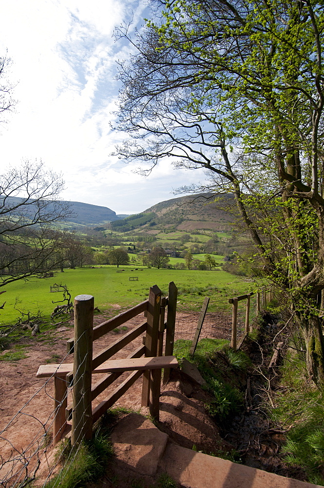 Footpath at Llanthony, Monmouthshire, Wales, United Kingdom, Europe  - 492-3543