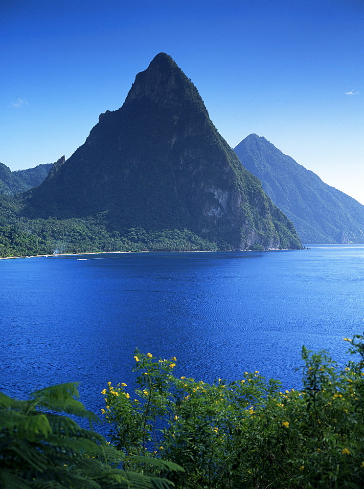 The Pitons, St. Lucia, Windward Islands, West Indies, Caribbean, Central America - 526-1468