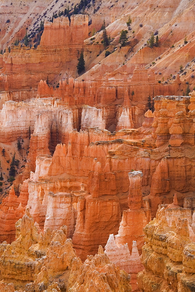Thor's Hammer, Bryce Canyon National Park, Utah, United States of America, North America