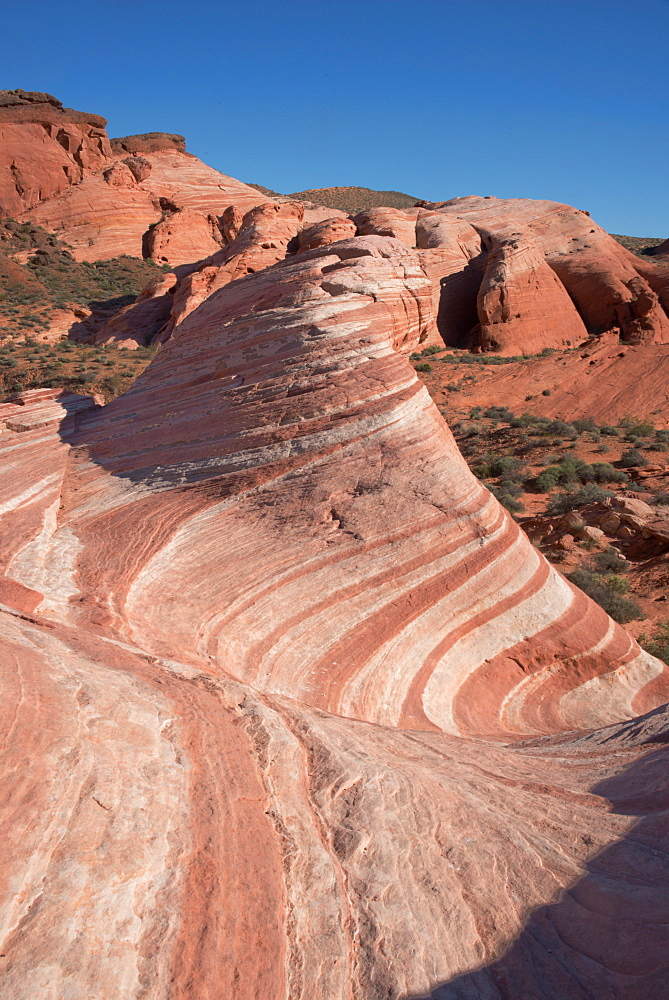The Fire Wave, Valley of Fire, near Las Vegas, Nevada, United States of America, North America