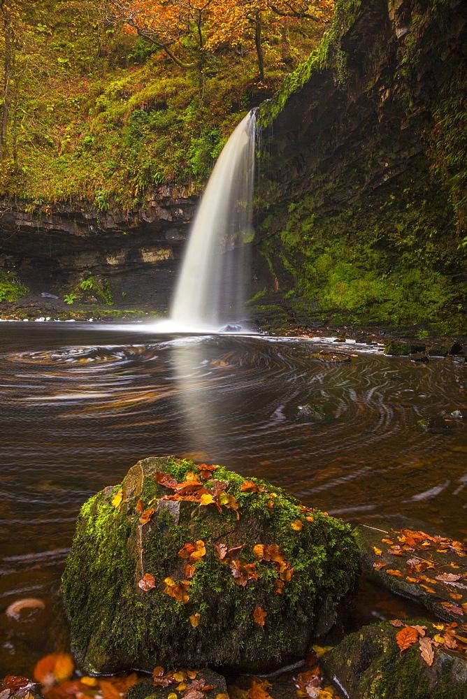 Sgwd Gwladys (Lady Falls), Afon Pyrddin, near Pontneddfechan, Brecon Beacons National Park, Powys, Wales, United Kingdom, Europe