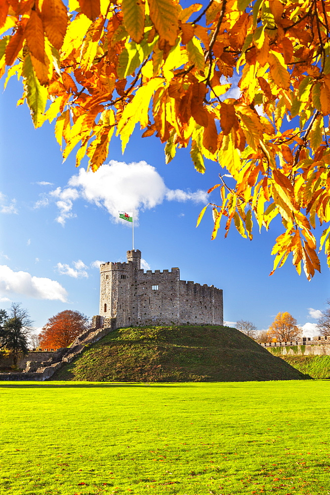 Norman Keep in autumn, Cardiff Castle, Cardiff, Wales, United Kingdom, Europe - 696-837