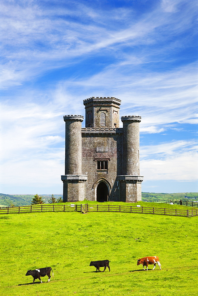 Paxtons Tower, Llanarthne, Carmarthenshire, Wales, United Kingdom, Europe - 696-849