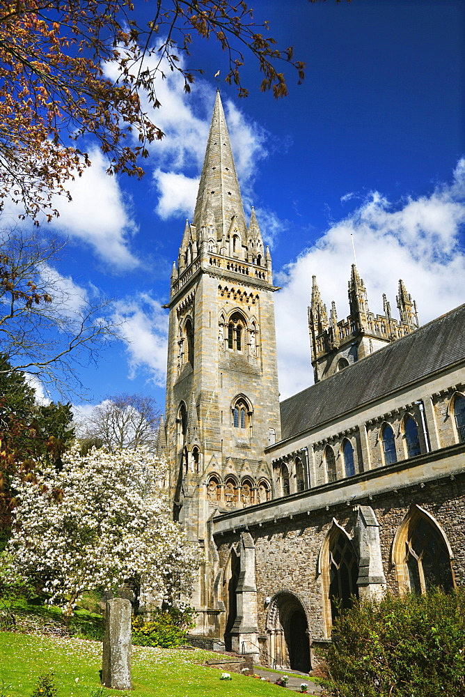 Llandaff Cathedral, Cardiff, Wales, United Kingdom, Europe - 696-856