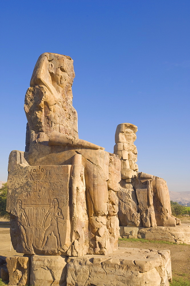 Two giant statues known as the Colossi of Memnon carved to represent the pharaoh Amenhotep III of the dynasty XVIII, West bank of the River Nile,Thebes, UNESCO World Heritage Site, Egypt, North Africa, Africa