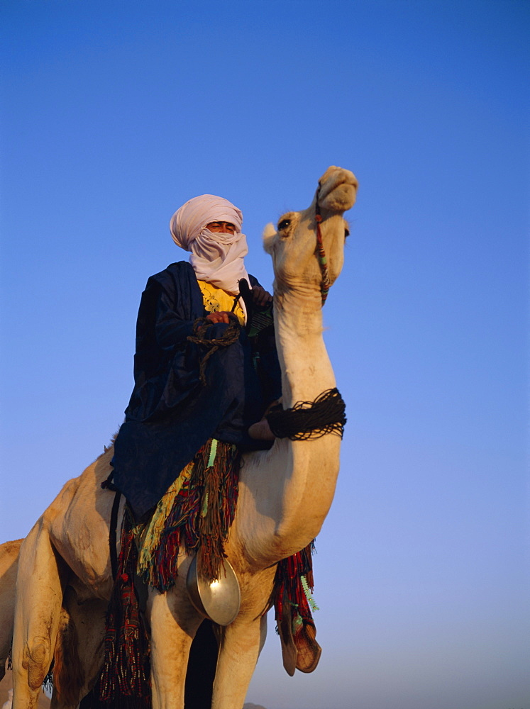 Tuareg on camel, Algeria, North Africa