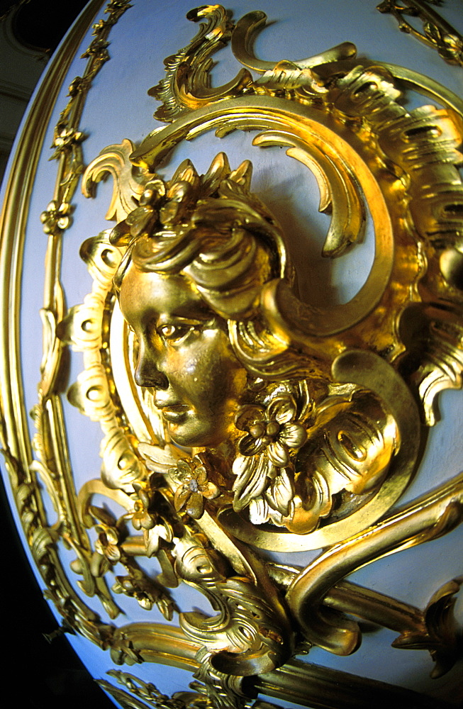 Russia, Saint Petersburg, Tsarskoie Selo (Pushkin) Catherine Ii Castle, Close Up Of Golden Panelling