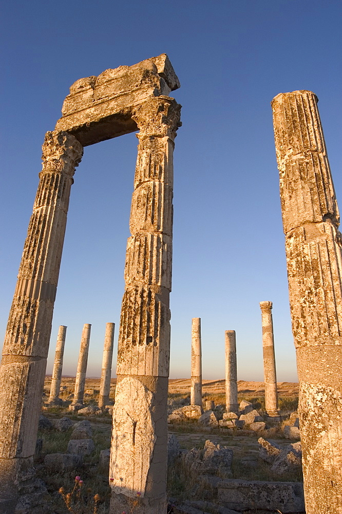 Archaelogical site, Apamea (Qalat at al-Mudiq), Syria, Middle East